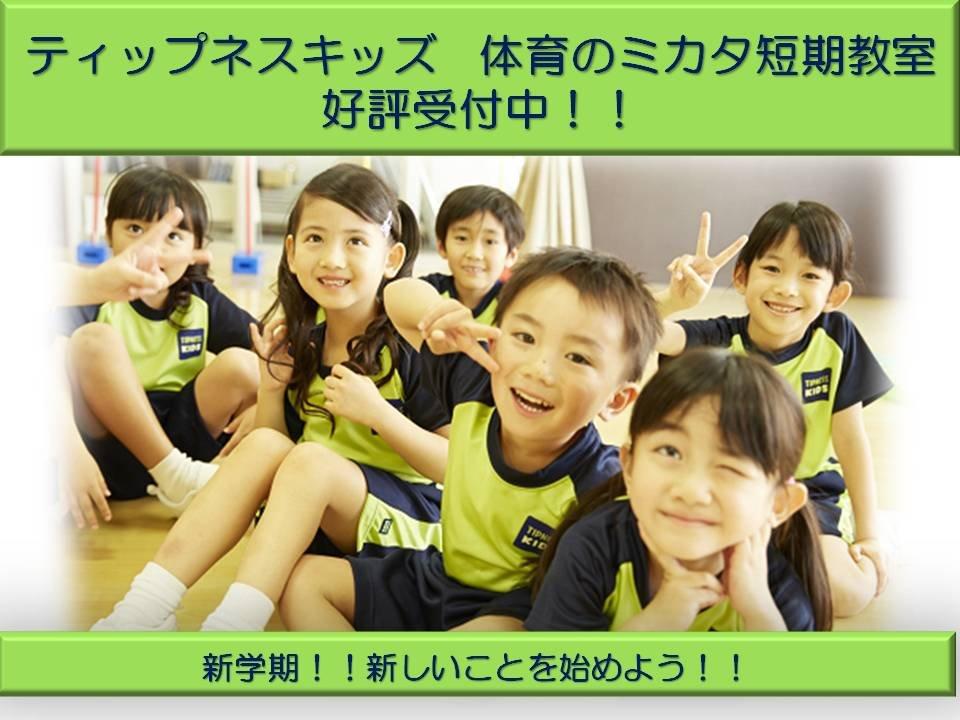 【体育のミカタ】好評受付中!